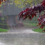 مدیرکل هواشناسی خوزستان:تاراز با ۹۱ میلیمتر رکورددار میزان بارندگی در خوزستان