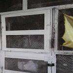 معاون برنامه ریزی فرمانداری اهواز:طرح نظارت بر نانواییها در اهواز برای مقابله با کرونا