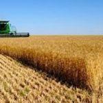 وزیر جهاد کشاورزی مطرح کرد:خسارت ۱۳ هزار میلیارد تومان سیل سال گذشته به کشاورزی خوزستان